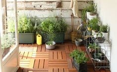 Garden storage   Muji storage   household goods featured   MUJI Net Store