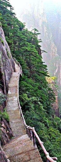 TOP 11 Most Beautiful Paths On The Planet YouMustBeHere.com