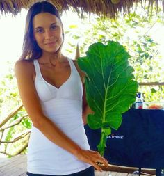 Humongous collard green! As big as my upper body...This collard leaf makes an excellent nutrient-dense wrapper filled with a tasty mixture of rainbow veggies.