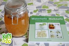 Waterkefir: handige probiotica