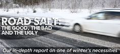 Salt saves lives on icy roads, but it can have the opposite effect in nearby ecosystems. #environment #salt #snow #ice #winter