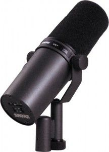 Shure SM7B dynamic microphone http://ehomerecordingstudio.com/dynamic-studio-microphone/