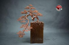 A cascade bonsai tree made of copper. 7 Year Anniversary, Anniversary Photos, Bonsai Wire, Copper Wire, Decorating Your Home, Wire Trees, Jewelry Hanger, Husband Birthday, Base