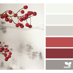 design seeds | search | for all who ♥ color ❤ liked on Polyvore featuring backgrounds, design seeds, colors, palettes and red