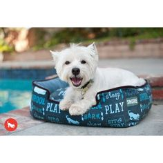 Treat your best friend to a comfortable dog bed that fits them just right with one of P.'s medium sized dog beds. Browse for the perfect dog bed here! Westies, Luxury Pet Beds, Pet 5, Designer Dog Beds, Medium Dogs, Dog Friends, Dog Toys, Dog Life, Your Dog
