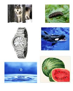 Resource: Pictures of objects start with letters A to Z | Learn The Fun Way