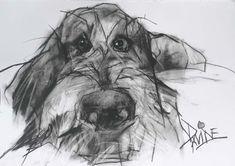 'Oscar III' by Valerie Davide, original charcoal. Animal Drawings, Art Drawings, Petit Basset Griffon Vendeen, Dog Illustration, Dog Paintings, Claude Monet, Grafik Design, Dog Portraits, Vincent Van Gogh