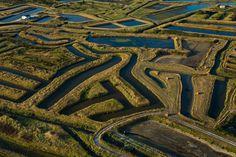 Claires du marais d'Oléron destinées à l'affinage des huîtres - Ile d'Oléron - Charente Maritime (17) - Poitou Charentes