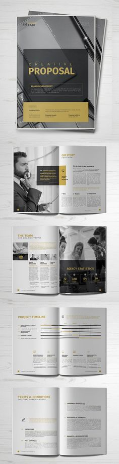 Professional Business Proposal Templates Design - 18 #businessproposal #booklet #brochuredesign #brochuretemplates #catalogdesign #proposaltemplates