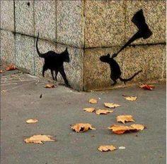 by daring rats
