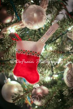 Christmas stocking pregnancy announcement. DEFRAIN PHOTOGRAPHY.