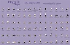 hatha yoga poses - Level 3