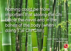 Quote by Justin Stone, Originator of the moving meditation T'ai Chi Chih: Find more info at www.taichichih.org Justin Stone, Stone Quotes, Tai Chi Qigong, Body Bones, Ways To Stay Healthy, Qi Gong, True Nature, Martial Arts, Meditation