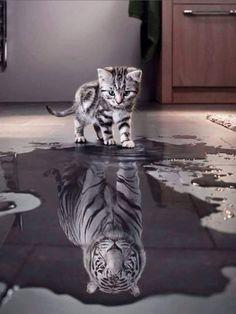 Piensa siempre en grande... Visualiza tu futuro como un gran sueño.