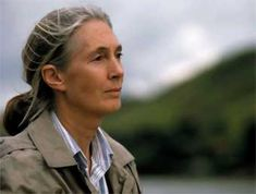 Jane Goddall.  I worship her. No make-up, no designer clothes. Only  perfect beauty from the inside out.