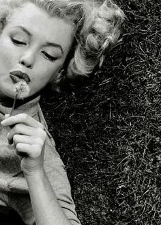 Marilyn Monroe laying in grass