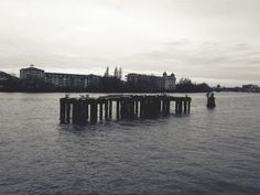 📌 dock lake water - get this free picture at Avopix.com    ▶ https://avopix.com/photo/23807-dock-lake-water    #pier #dock #lake #support #water #avopix #free #photos #public #domain