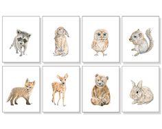 Woodland Animal Prints Forest Animal Prints Woodland Nursery Art Gender Neutral Art Bear Deer Bunny Rabbit Fox Squirrel Owl Raccoon Set of 8 by jamesriverstudios on Etsy https://www.etsy.com/listing/207965278/woodland-animal-prints-forest-animal