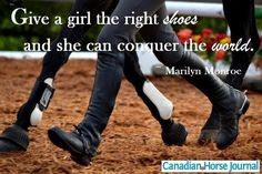The right #shoes #Equestrians Equestrian Quotes, Equestrian Style, Most Beautiful Animals, Beautiful Horses, Beautiful Pictures, Horse Girl, Horse Love, Canadian Horse, Horse Quotes