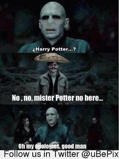 Consuela Potter
