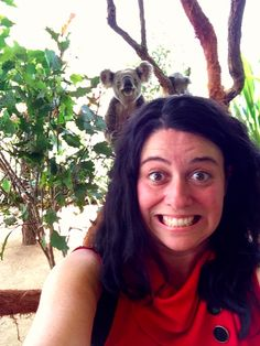 Get photobombed by a koala. Check. #goaustralia