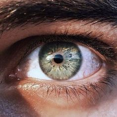 Image de beautiful, eye, and eyes