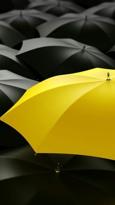 This totally makes me think of How I Met Your Mother because everyone else except the mom pretty much has a black umbrella, and the mom's is yellow. Mellow Yellow, Black N Yellow, Black And White, Golden Yellow, Mustard Yellow, Color Splash, Color Pop, Color Yellow, Splash Art
