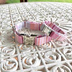 straps collar dog collar collar collar straps mom puppy collar dog collar collar end dog collar Handmade Dog Collars, Dog Bows, Dog Accessories, Pet Toys, Your Pet, Dog Lovers, Pet Pet, Pink Dog, Puppies