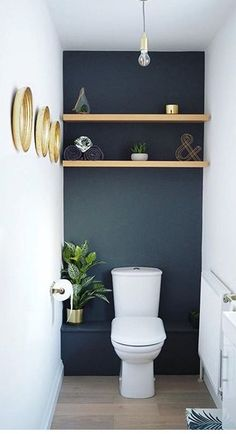 Dark wall behind toilet & wooden shelves