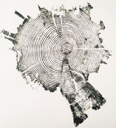 Image result for tree rings art