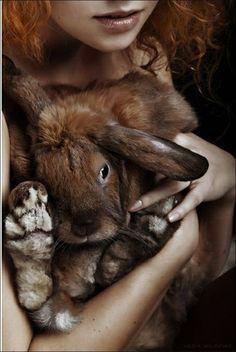 Fur bunny walk