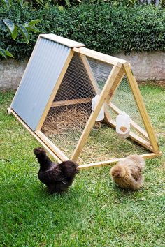 Learn how to build a cheap chicken coop, because chicken coops do not need to be expencive, it just need to be simple and practical. What people. A Frame Chicken Coop, Backyard Chicken Coop Plans, Cheap Chicken Coops, Mobile Chicken Coop, Small Chicken Coops, Chicken Pen, Chicken Cages, Building A Chicken Coop, Chickens Backyard