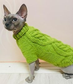 Cute Hairless Cat, Sphynx Cat, Cat Clothing, Pet Clothes, All About Animals, Cat Sweaters, Winter Colors, Cats And Kittens, Cute Cats