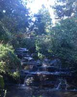 Kodaikanal-Vattakanal, Eden de l'Inde du Sud, cascades qui valent le détour dans la région de Kodaikanal http://www.actupondy.com/fr/tourisme-en-inde-du-sud/sites-touristiques/22016-kodaikanal-vatakanal-eden-de-l-inde-du-sud