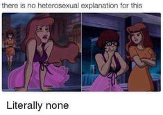 Is this real. LGBT Queer Lesbian Gay Love and Pride Pics and Quotes! Please click the link below to join our VIP email list. >> Win FREE Pride gear gift cards and vacations! Tumblr Funny, Funny Memes, Sarcastic Memes, Hilarious Texts, Funny Facts, Funny Tweets, Funny Shit, Funny Quotes, Dreamworks