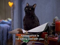 The 40 Greatest Things Ever Said By Salem The Cat. He was the only reason I ever watched this show.