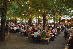 """""""The characteristics of a traditional beer garden include trees (no sun umbrellas), wooden benches (no plastic garden chairs), gravel bed (no street pavement), and solid meals (no fast food)."""" http://www.oktoberfesthaus.com"""