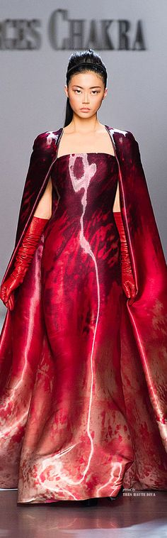 Georges Chakra Couture Fall/Winter 2014-15