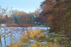 Still Ruht Der See Darmstadt-Arheilgen - Arheilger Mühlchen