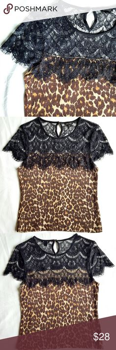 """Ann Taylor Blouse Gorgeous animal print and eyelash lace combined in a short sleeve blouse/sweater. The body is sweater material, thick 60% cotton 40% rayon. Lace is 100% nylon. 15"""" shoulder to shoulder,  17"""" armpit to armpit. Has a tiny torn on the lace of left sleeve (last pic) absolutely invisible,  just wanted to mention it. In excellent condition. Ann Taylor Tops Blouses"""