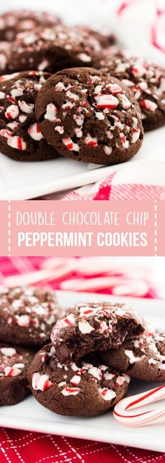 Double chocolate chip peppermint cookies are packed with candy cane bits and chocolate chips. They are the perfect Christmas cookie! #christmas #cookies #recipes #chocolatecookies #desserts #CookieSwap
