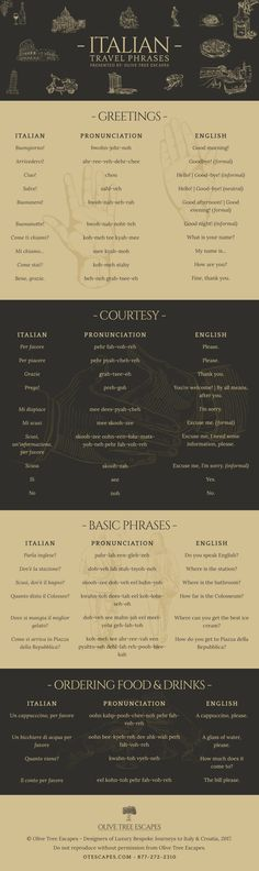 Travel and Trip infographic Italian Travel Phrases Infographic
