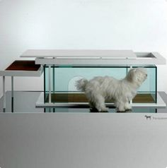 """Dog is a God"" transparent dog house. Very fancy. Cool choice for a modern, stylish home #doghouse"