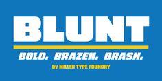 Blunt™ - Webfont & Desktop font « MyFonts