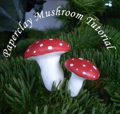 "She uses ""Delight paper clay.  Tutorial paperclay mushrooms  @Tia Lappe Lappe"