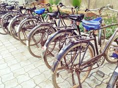 Bicycles.