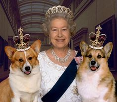 Queen Elizabeth II and two of her four Royal corgis.