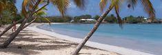 Vous souhaitez visiter la Martinique ? On vous présente toutes les activités et les sorties que vous pouvez faire lors de vos vacances en Martinique.