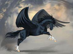 I got: Pegasus! What Is Your Mythical Pet? Unicorn Fantasy, Unicorn Art, Fantasy Art, Black Unicorn, Pegasus, Magical Creatures, Fantasy Creatures, Cavalo Wallpaper, Lion Noir