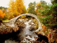the old bridge, carrbridge, scotland. Reminds me of the Shire from lord of the rings.